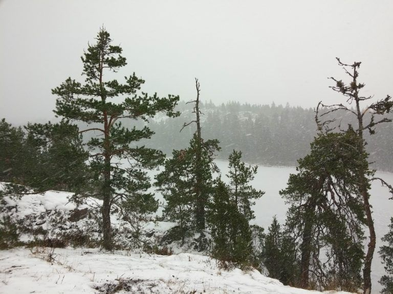 kallio-mustjarvi_ni-768x576